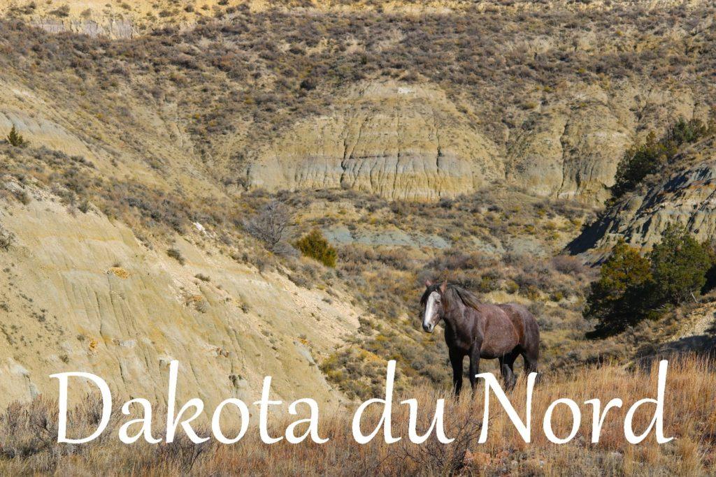 dakota du nord